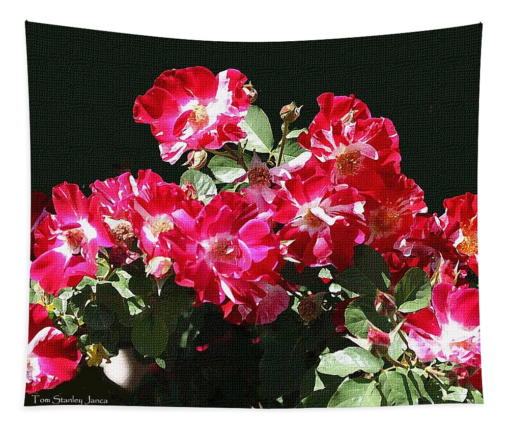 Mcc Tapestry featuring the photograph Mcc Rose Garden- Roses by Tom Janca