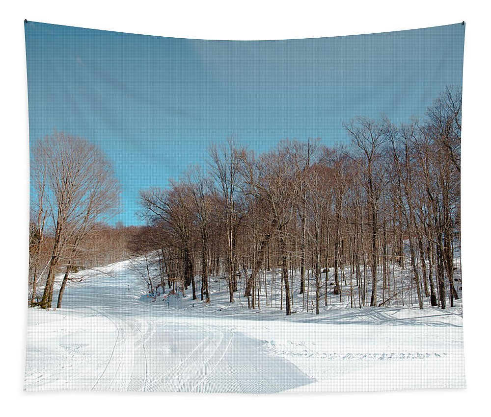 Mccauley Mountain Ski Area Tapestry featuring the photograph Mccauley Mountain Ski Area Vii- Old Forge New York by David Patterson