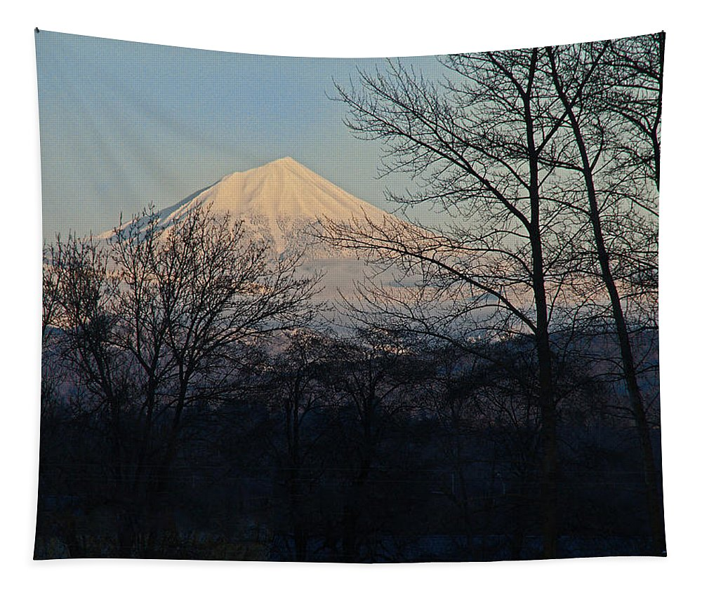 Mt Mclaughlin Tapestry featuring the photograph Mclaughlin Late Winter Day by Mick Anderson