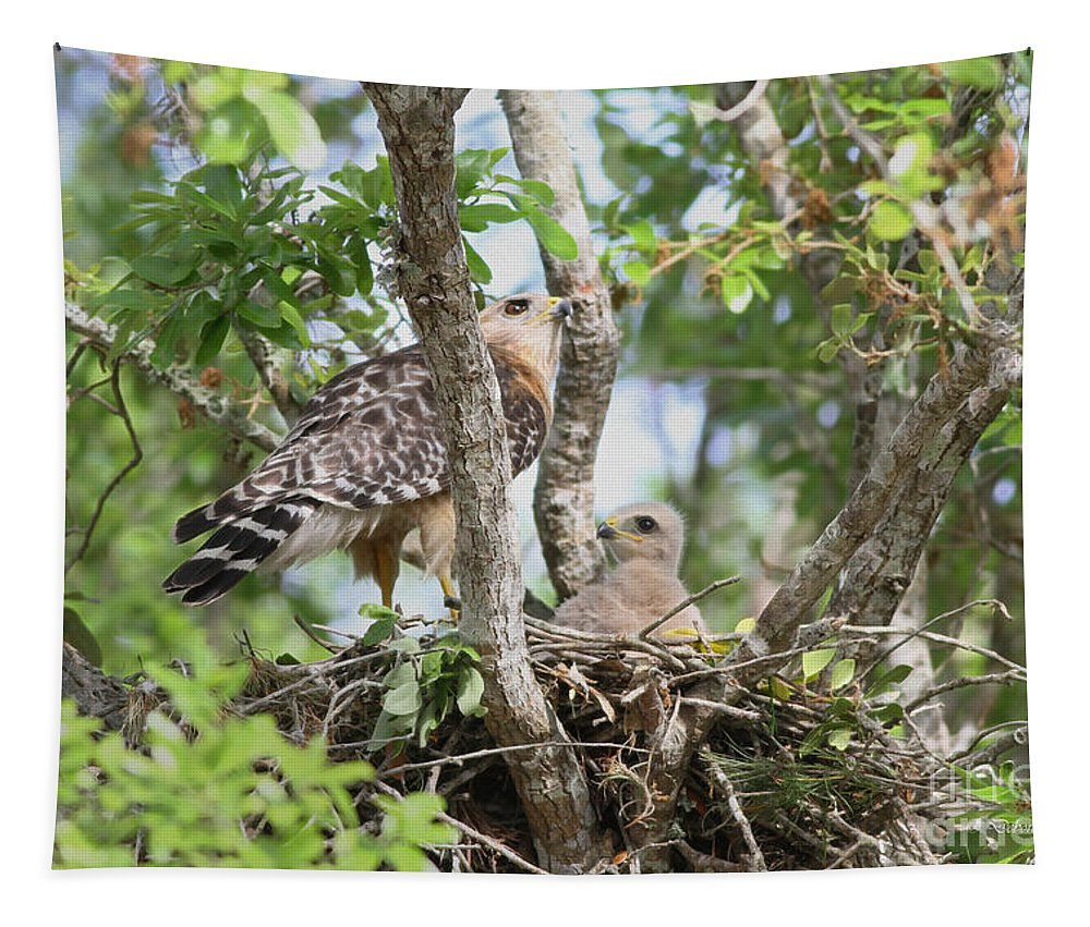 Hawk Tapestry featuring the photograph Me And Mom by Deborah Benoit