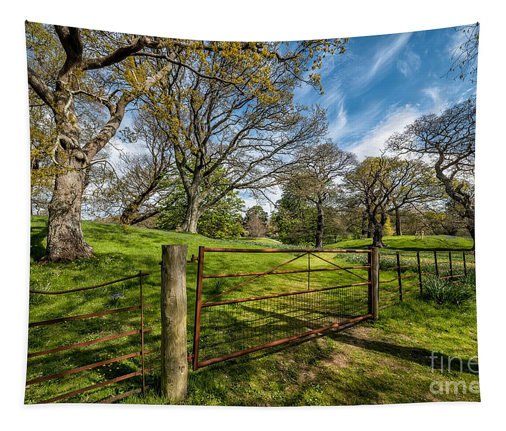 Cymru Tapestry featuring the photograph Meadow Gate by Adrian Evans