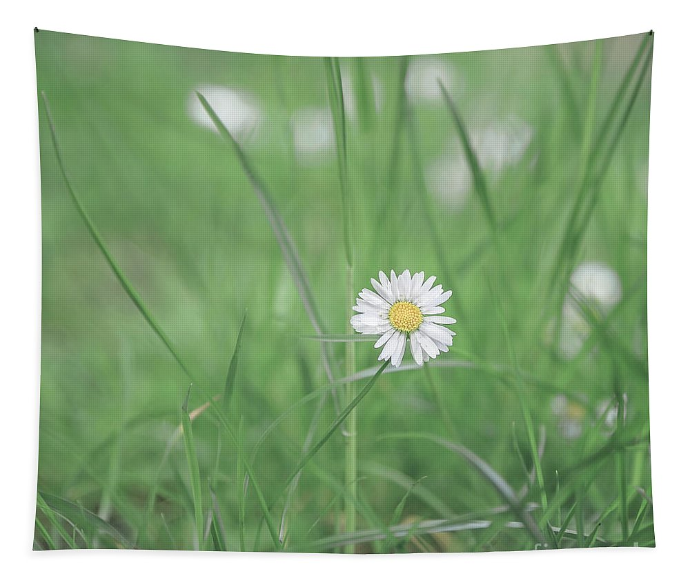 Flower Tapestry featuring the photograph Meadows Of Heaven by Evelina Kremsdorf