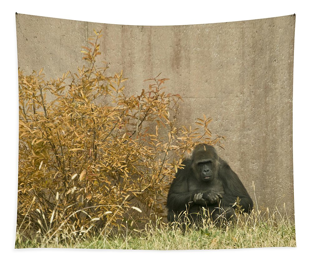 Primate Tapestry featuring the photograph Melancholy by Trish Tritz
