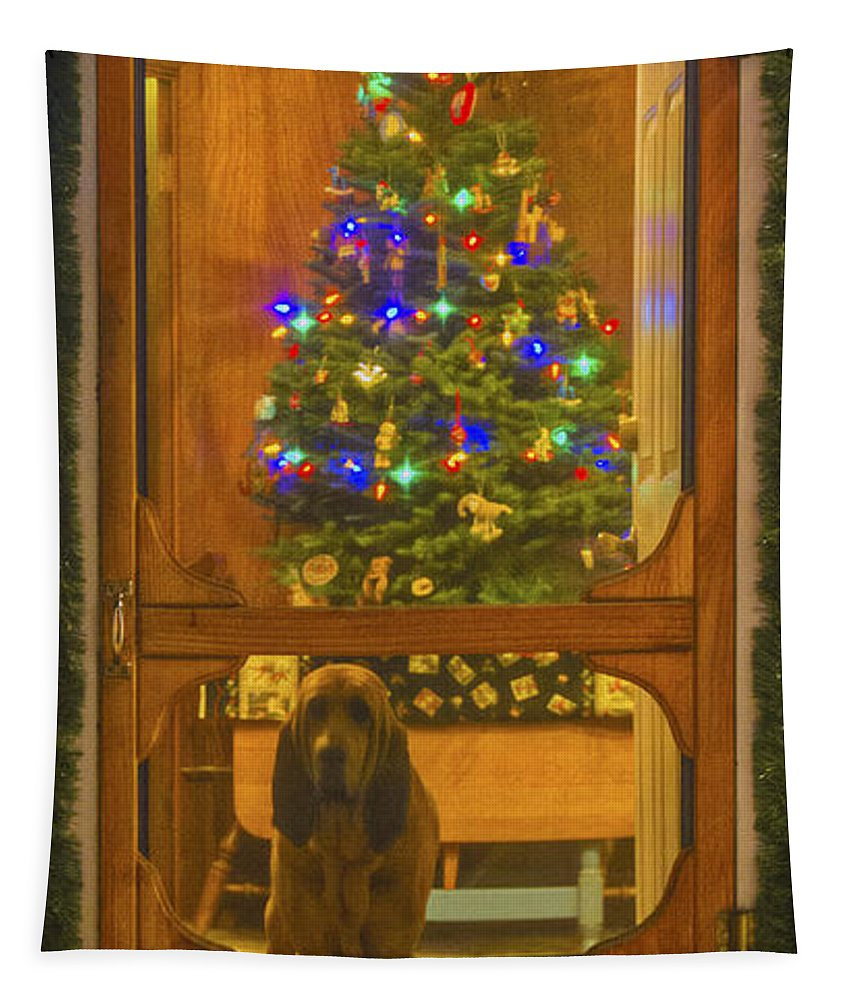 Merry Christmas Tapestry featuring the photograph Merry Christmas by Mitch Shindelbower