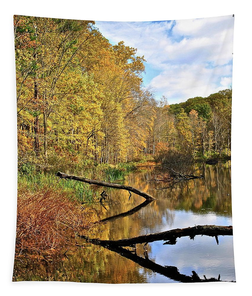 Landscape Tapestry featuring the photograph Mirror Mirror On The Floor by Frozen in Time Fine Art Photography
