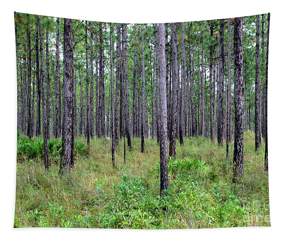 Mississippi Woods Tapestry featuring the photograph Mississippi Woods by Carol Groenen