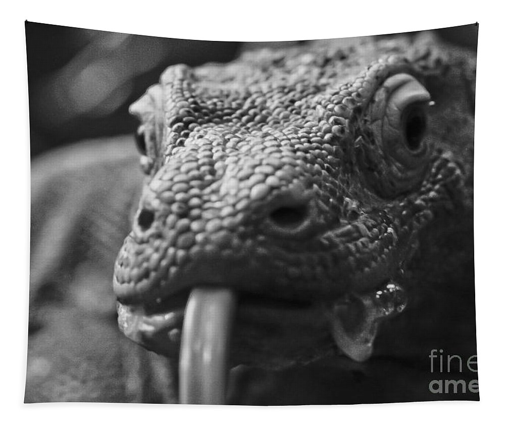 Lizard Tapestry featuring the photograph Mister Lizard by Mitch Shindelbower