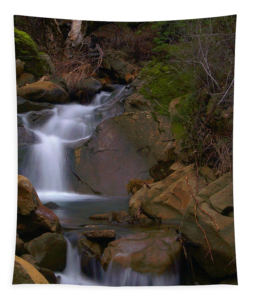 Mix Canyon Tapestry featuring the photograph Mix Canyon Creek by Bill Gallagher