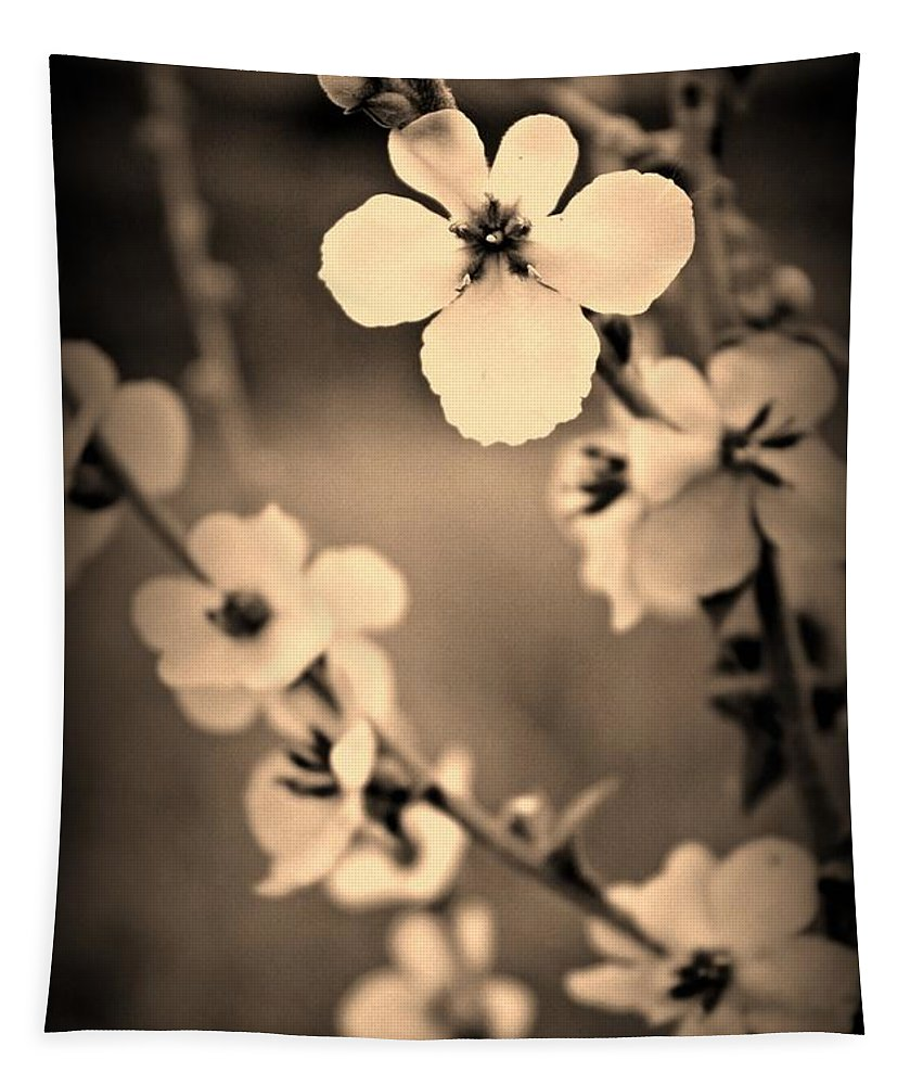 Flowers Tapestry featuring the photograph Modern Beauty by Clare Bevan