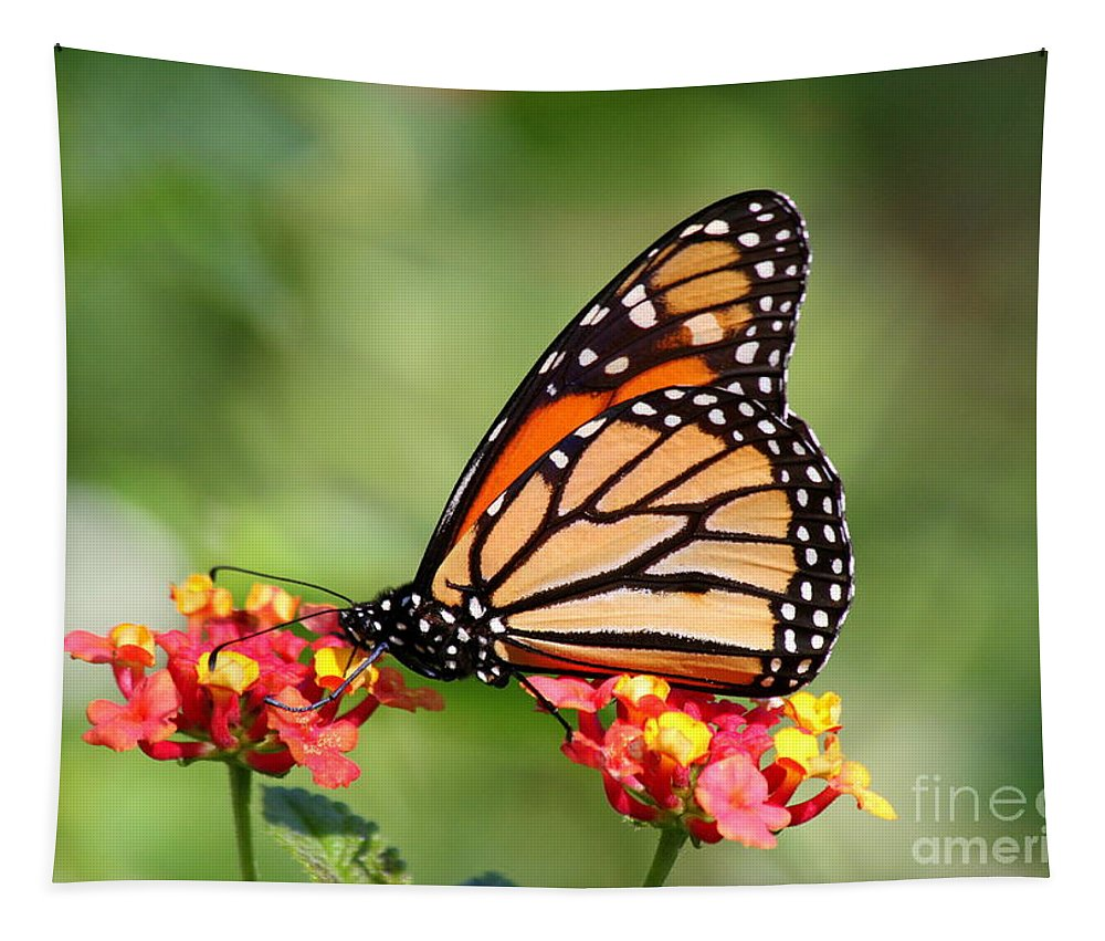 Monarch Butterfly Tapestry featuring the photograph Monarch Butterfly On Lantana Flowers by Catherine Sherman