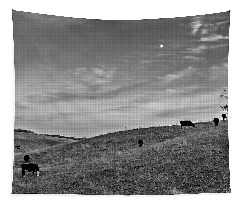 Rural Tapestry featuring the photograph Moo Moon Bw by Steve Harrington