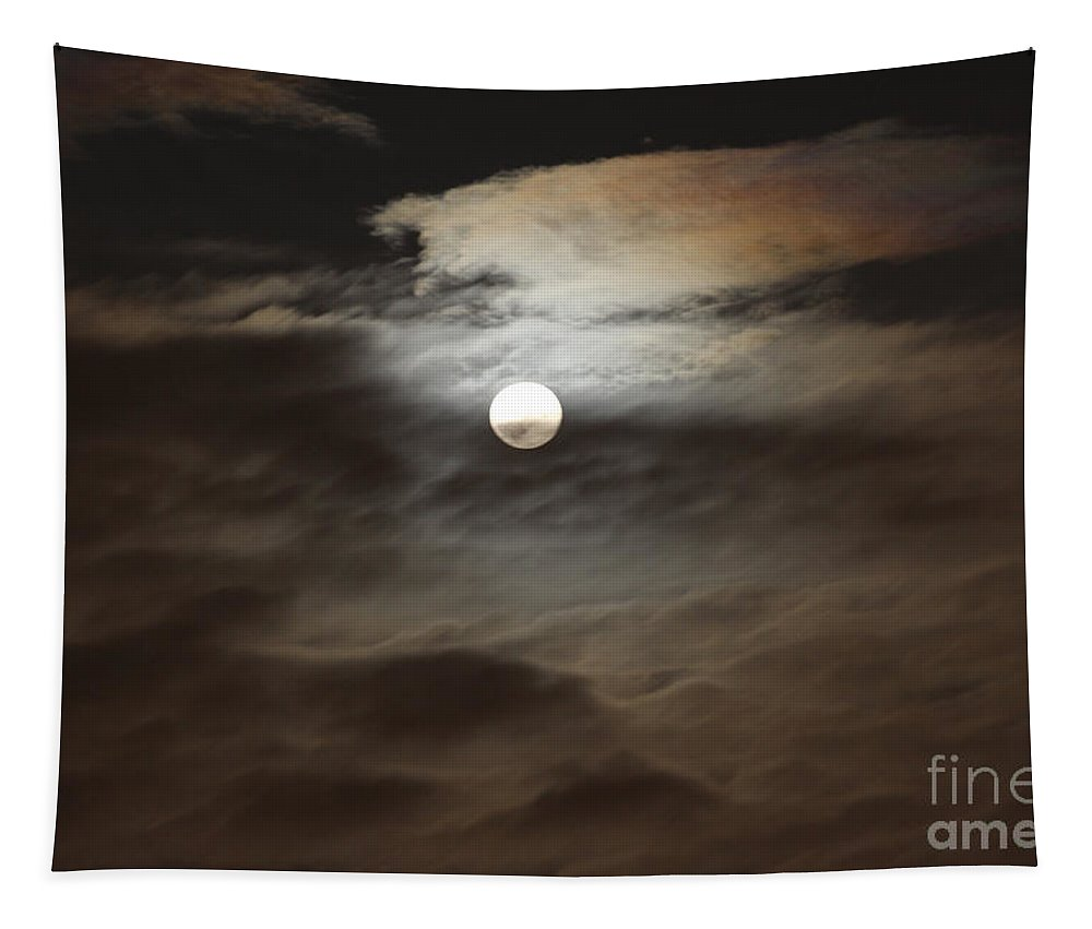 Moon Tapestry featuring the photograph Moon Shine 2 by Karen Adams