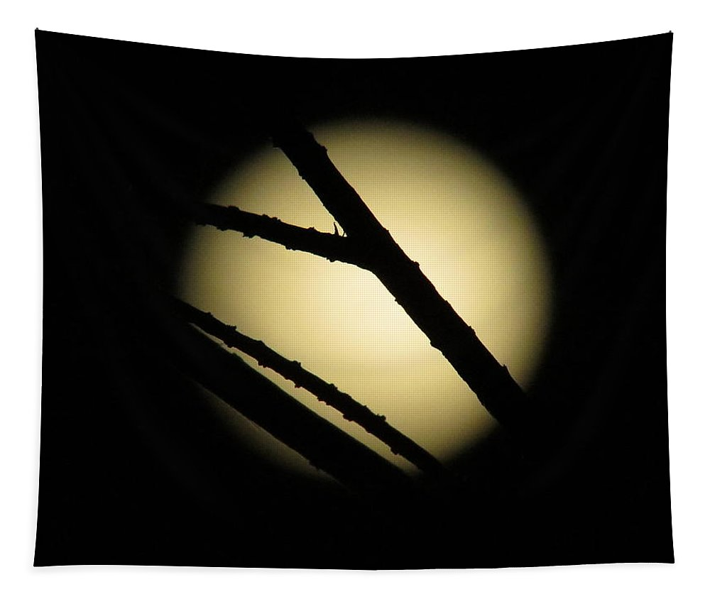 Full Moon Tapestry featuring the photograph Moon Through The Branches by Zina Stromberg