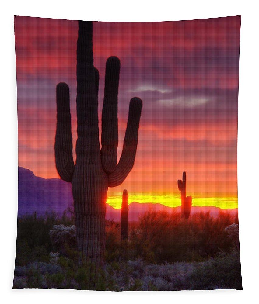 Saguaro Sunrise Tapestry featuring the photograph Morning Arizona Style by Saija Lehtonen