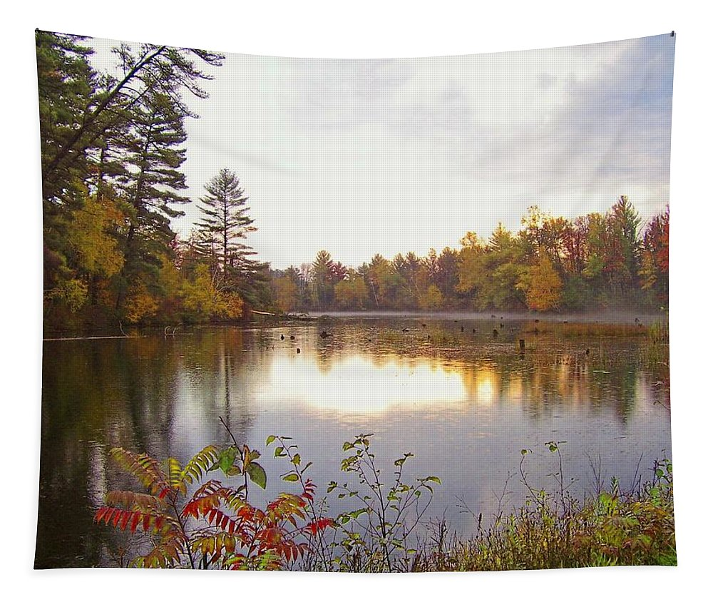 Lake Tapestry featuring the photograph Morning Fog On The Lake by Susan McMenamin