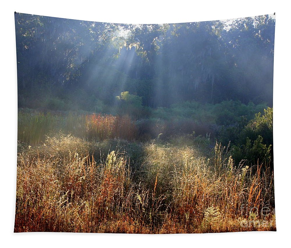 Marsh Tapestry featuring the photograph Morning Rays Through Live Oaks by Carol Groenen