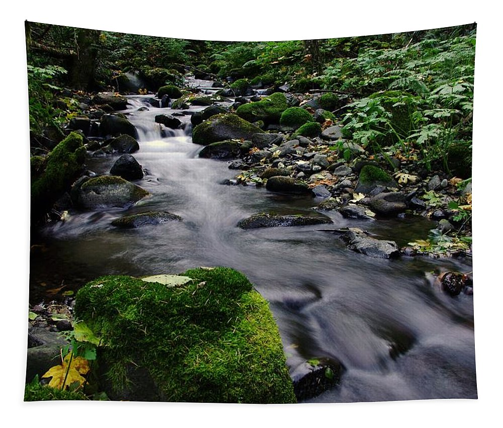 Rivers Tapestry featuring the photograph Mossy Rock Streamside by Jeff Swan