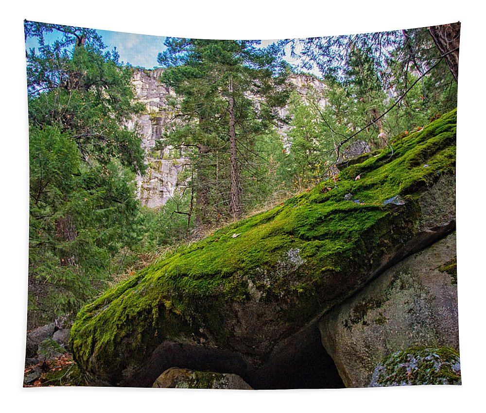 Fall Tapestry featuring the photograph Mossy Rocks Along Vernal Falls Trail by Lynn Bauer