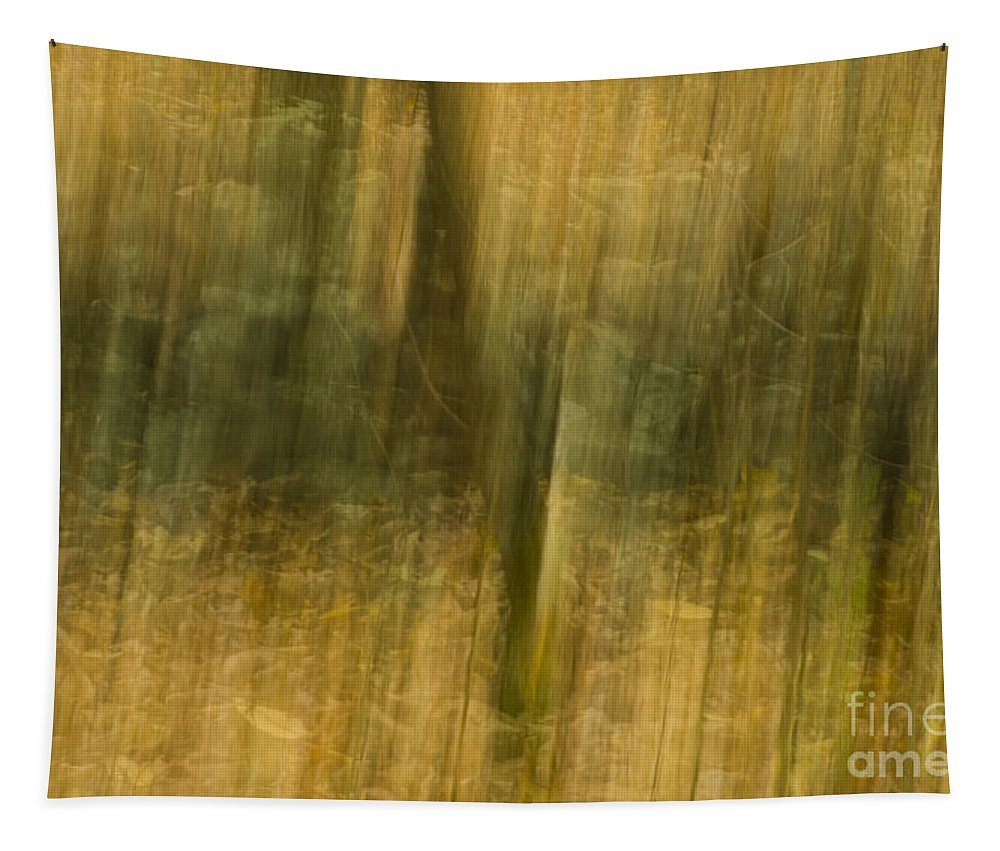 Yellow Tapestry featuring the photograph Motion Series - 123 by Paul W Faust - Impressions of Light