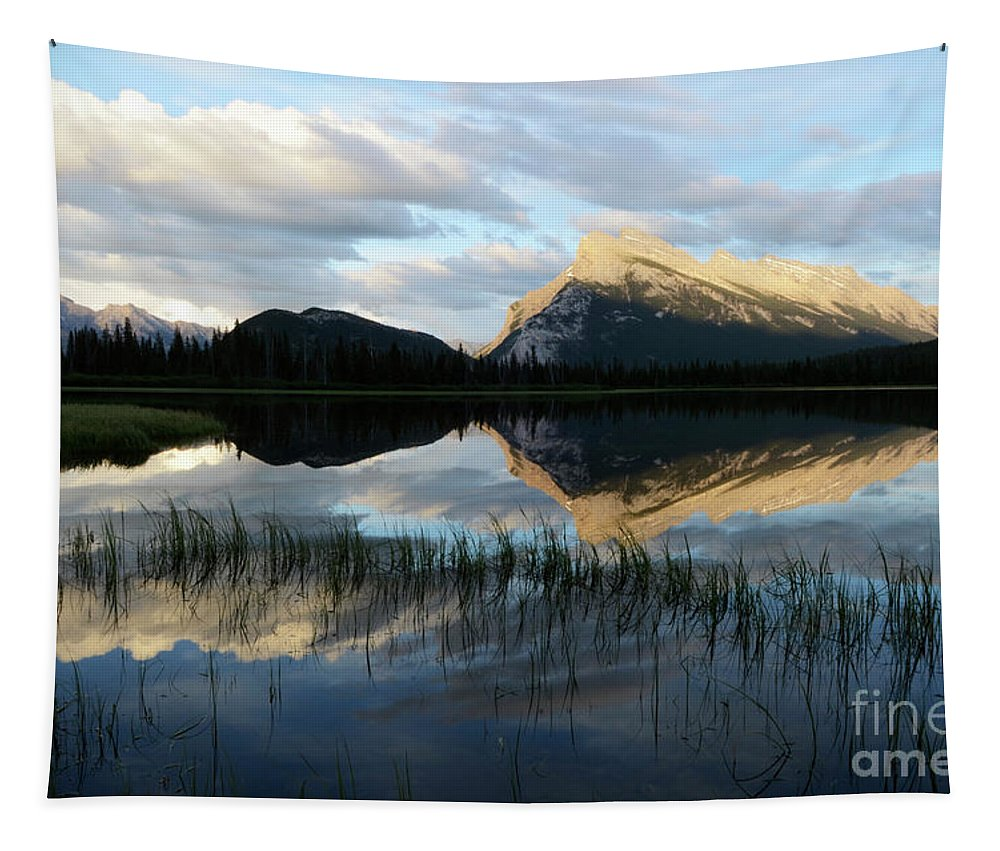 Mount Rundle Tapestry featuring the photograph Mount Rundle Banff by Bob Christopher