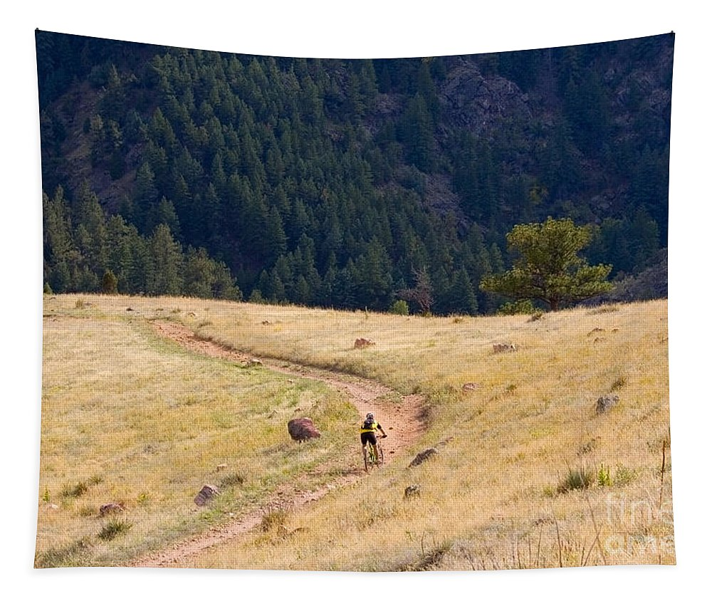 Mountain Bicycles Tapestry featuring the photograph Mountain Biker by Steve Krull
