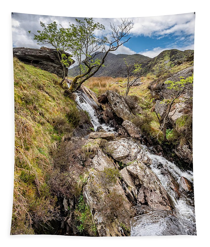 Brook Tapestry featuring the photograph Mountain River by Adrian Evans