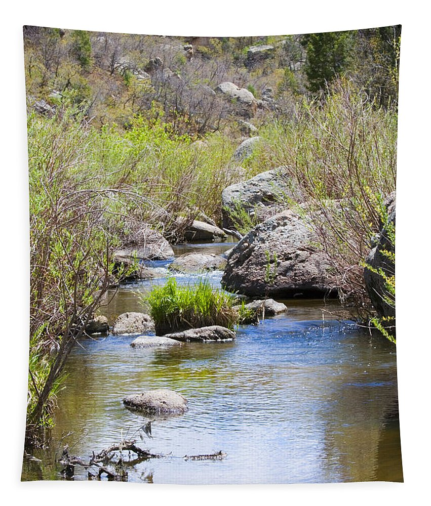 Cherry Creek Tapestry featuring the photograph Mountain Stream In Castlewood Canyon State Park by Steve Krull