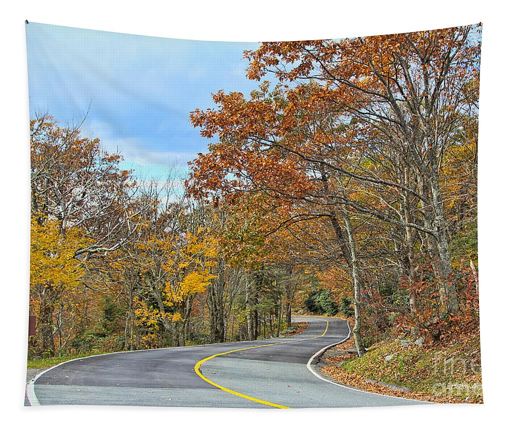 Autumn Tapestry featuring the photograph Movin On Down The Road by Deborah Benoit