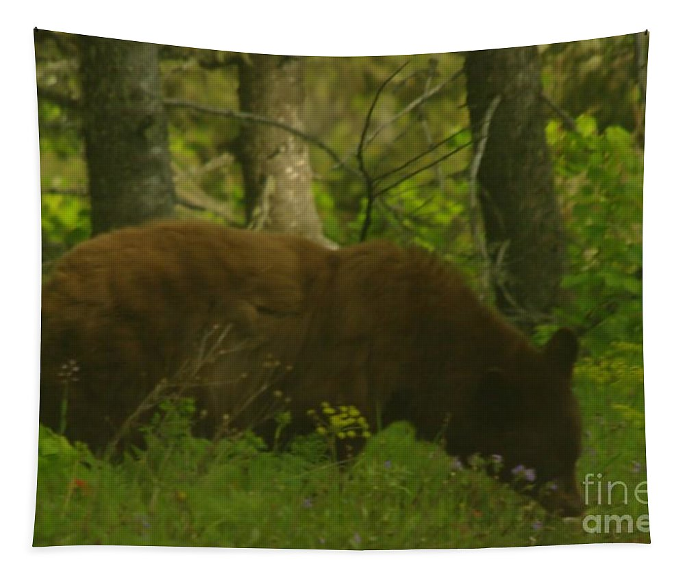 Wildlife Tapestry featuring the photograph Mr Hungry by Jeff Swan