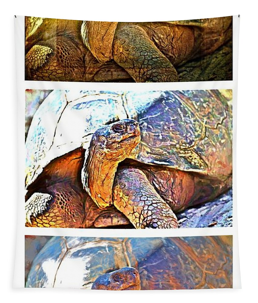 Tortoise Tapestry featuring the photograph Mr. Tortoise Vertical Triptych by Alice Gipson