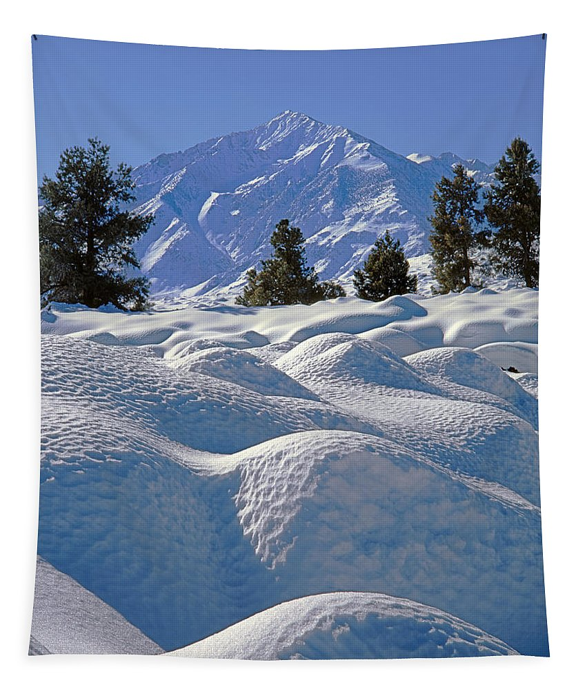 Mt. Tom Tapestry featuring the photograph 2m6403-mt. Tom From Sherwin Grade V by Ed Cooper Photography