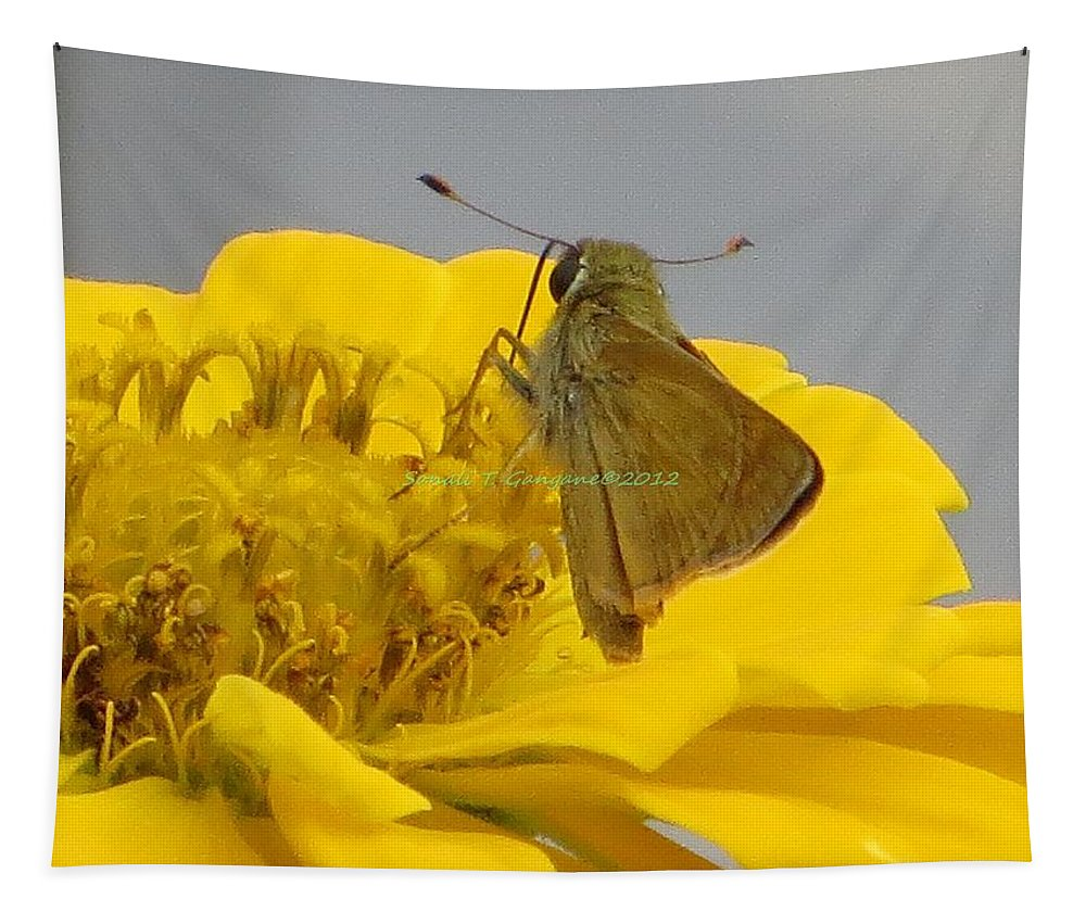 Zinnia The Wonder Tapestry featuring the photograph My Favourite Job by Sonali Gangane