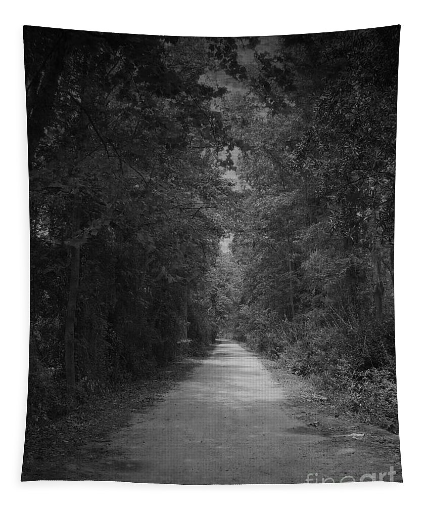 Road Tapestry featuring the photograph My Pathway by Andrea Anderegg
