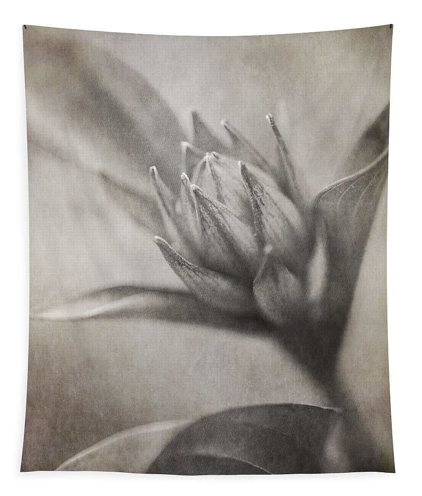 Floral Tapestry featuring the photograph Mystic Anticipation by Dale Kincaid