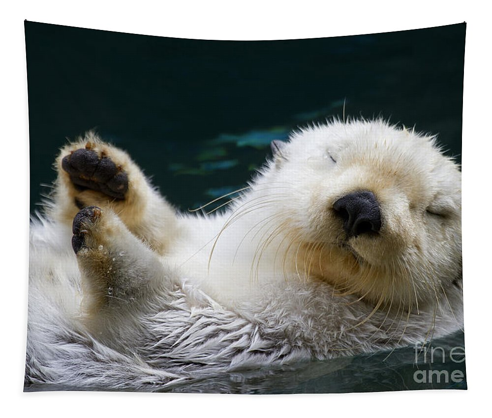 Otter Tapestry featuring the photograph Napping On The Water by Mike Dawson