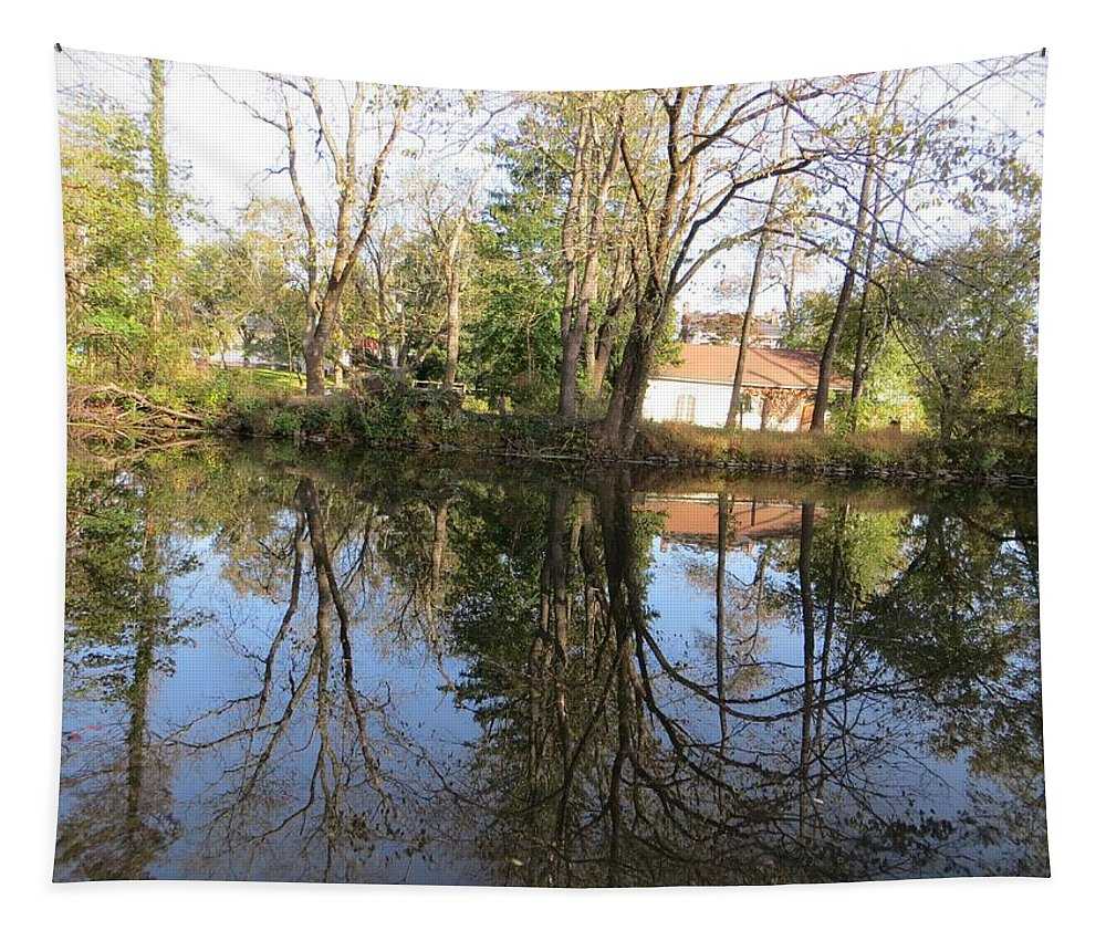 Reflection Tapestry featuring the photograph Natural Mirror by Sonali Gangane