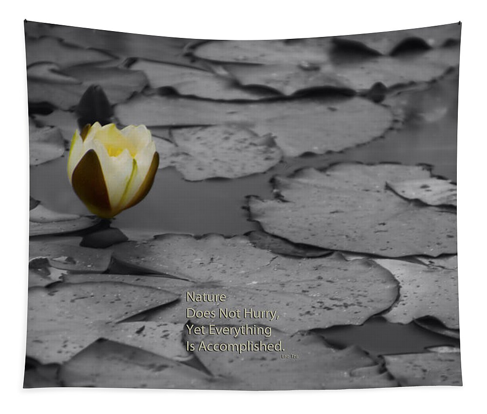 Lilly Tapestry featuring the photograph Nature Does Not Hurry Waterlily by Thomas Woolworth