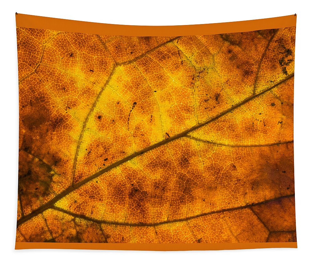 Abstract Tapestry featuring the photograph Nature by Sean O'Cairde