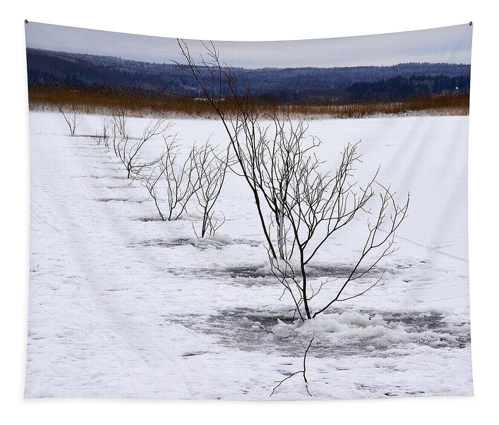 Finland Tapestry featuring the photograph Network Pathway by Jouko Lehto