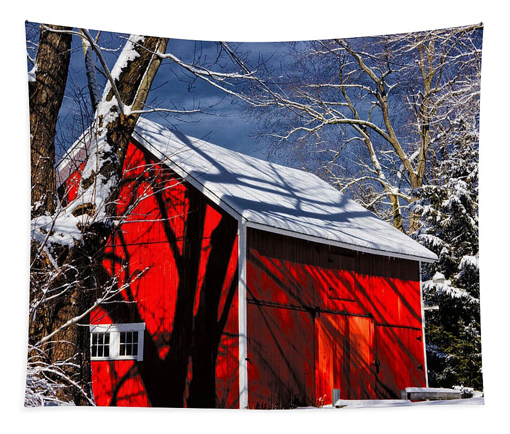 New England Winter Tapestry featuring the photograph New England Winter by Karol Livote