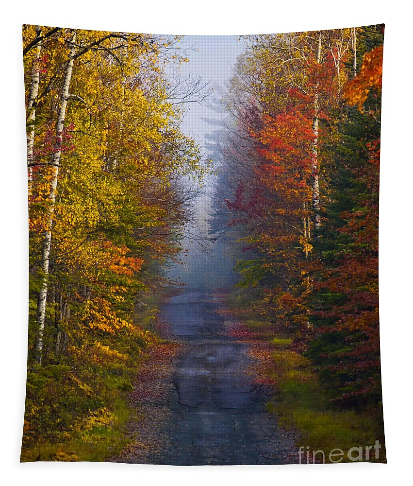 Back Road Tapestry featuring the photograph New Hampshire Back Road by Jerry Fornarotto