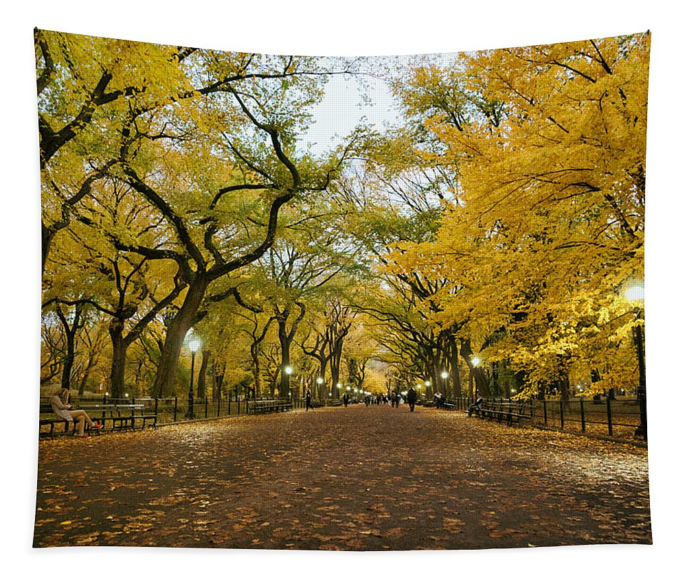 Nyc Tapestry featuring the photograph New York City - Autumn - Central Park - Literary Walk by Vivienne Gucwa
