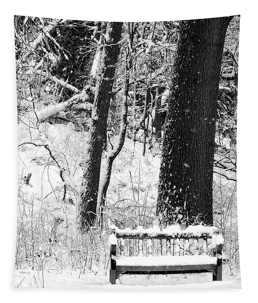 Photo Tapestry featuring the photograph Nichols Arboretum by Phil Perkins