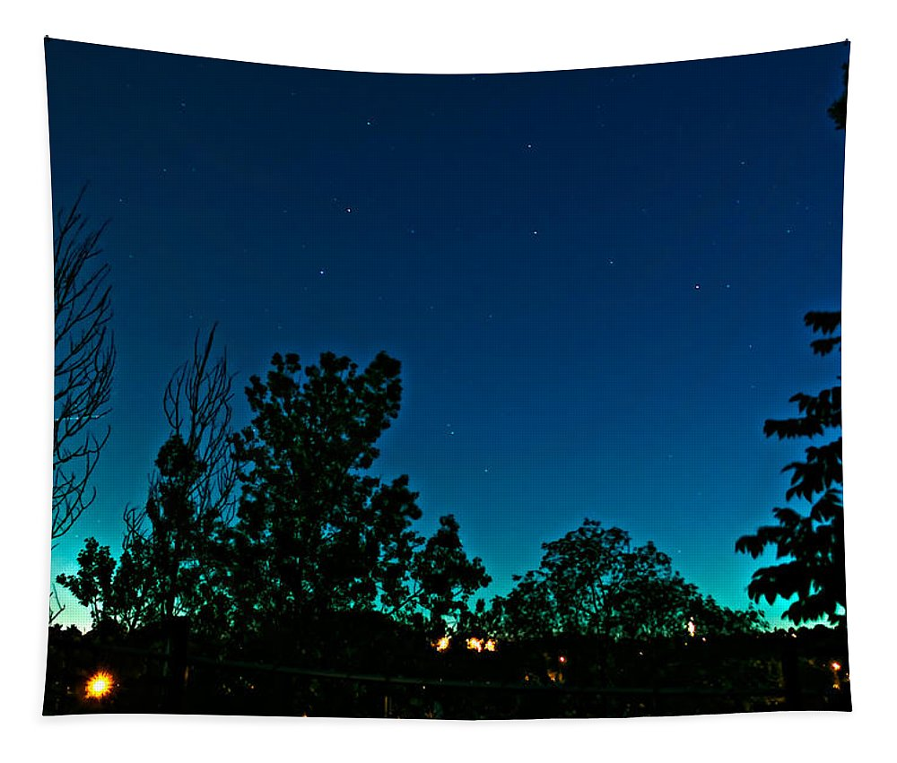 Evening Tapestry featuring the photograph Night Flight 2 by Steve Harrington