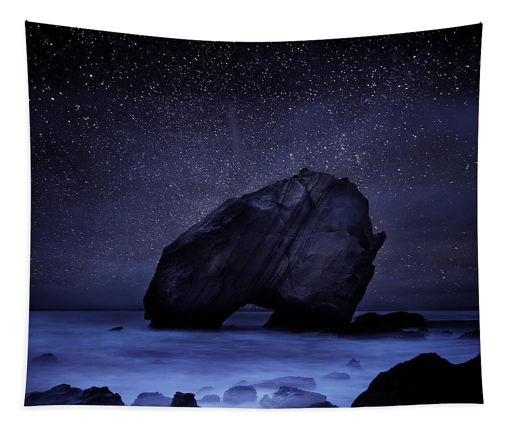 Night Tapestry featuring the photograph Night guardian by Jorge Maia
