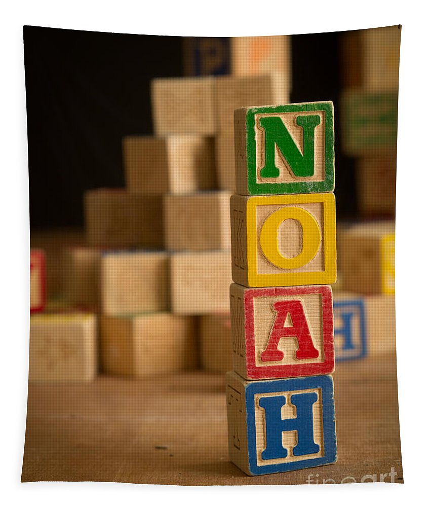 Alphabet Tapestry featuring the photograph Noah - Alphabet Blocks by Edward Fielding