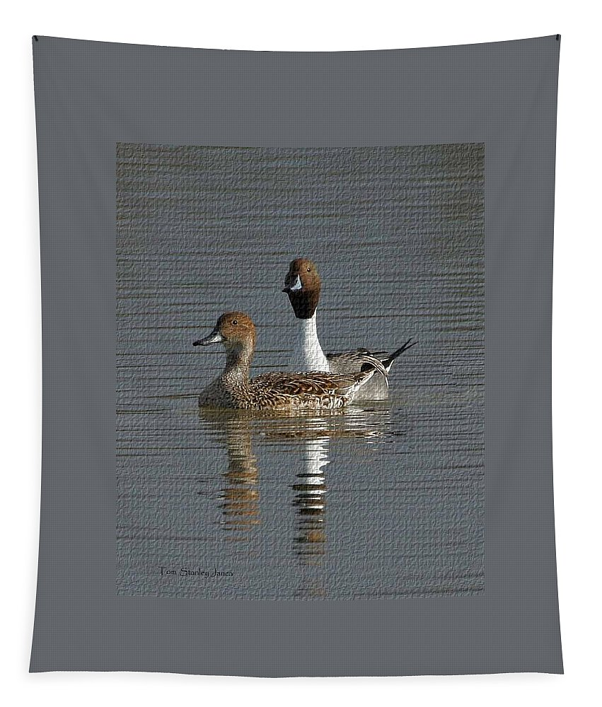Northern Pintail Pair Tapestry featuring the photograph Northern Pintail Pair by Tom Janca