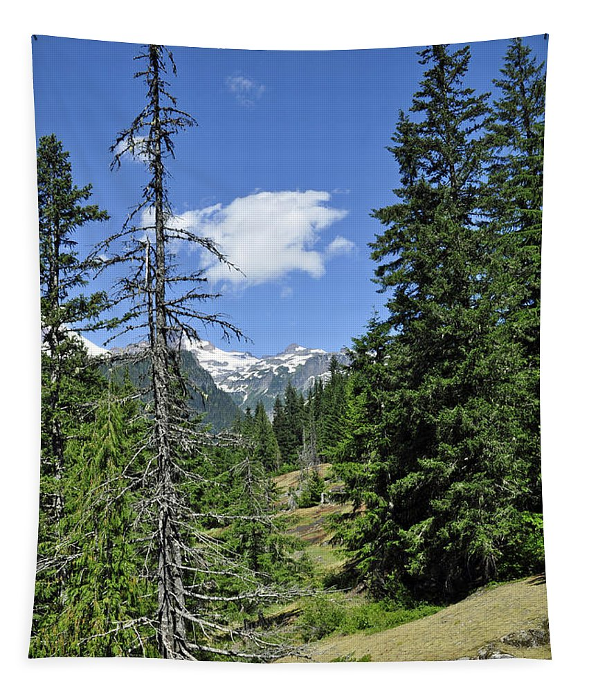 Landscape Tapestry featuring the photograph Northwest Frontier by Tikvah's Hope