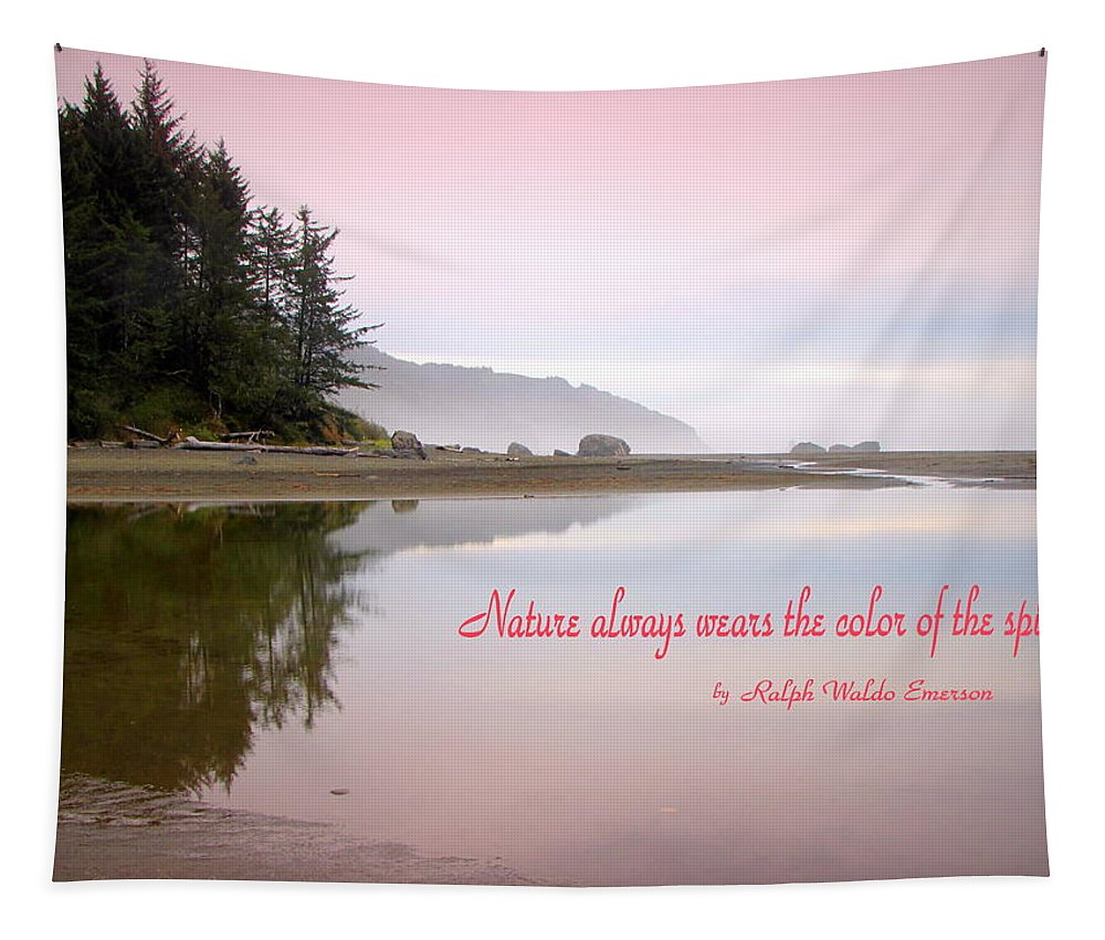 Morning Tapestry featuring the photograph Nothing Like An Early Morning On The Oregon Coast by Joyce Dickens