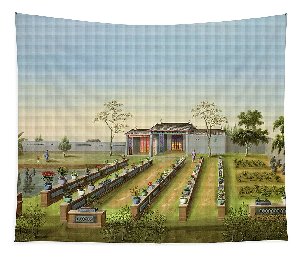 Landscape Tapestry featuring the drawing Nursery Garden, C.1820-40 by Chinese School